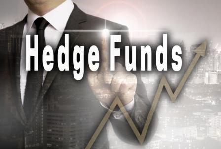 Advantages And Disadvantages Of Hedge Funds