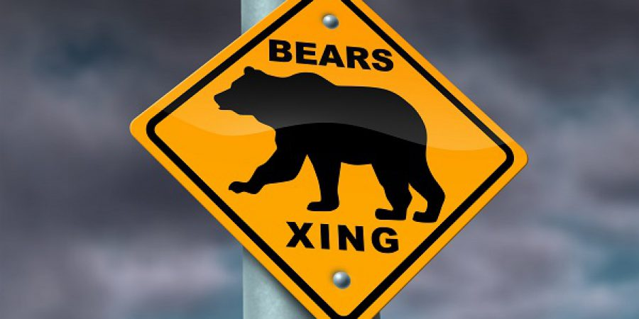 The Best Stocks For a Bear Market
