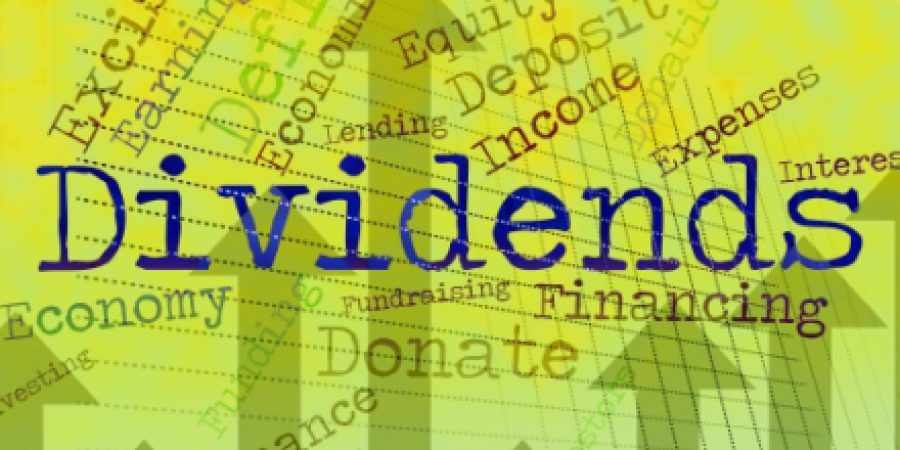 Dividend Investing – Cash or Stock?